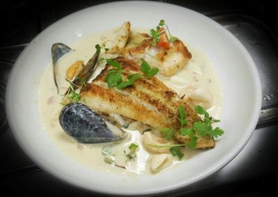 Catch of the day with white sauce and cream